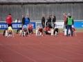 2009_06_06_vestdansk_mesterskab_skive_018.jpg